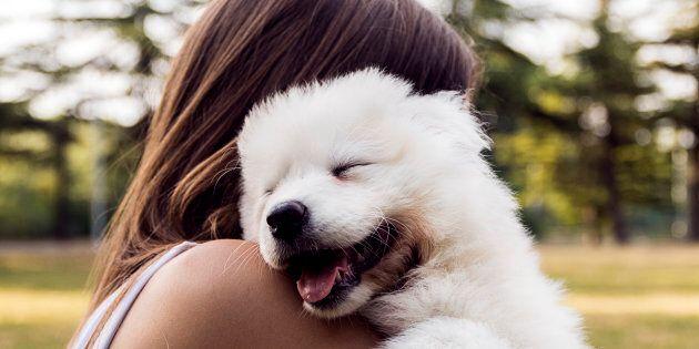 """""""I cani capiscono quando siamo tristi e ci consolano (soprattutto se piangiamo)"""""""