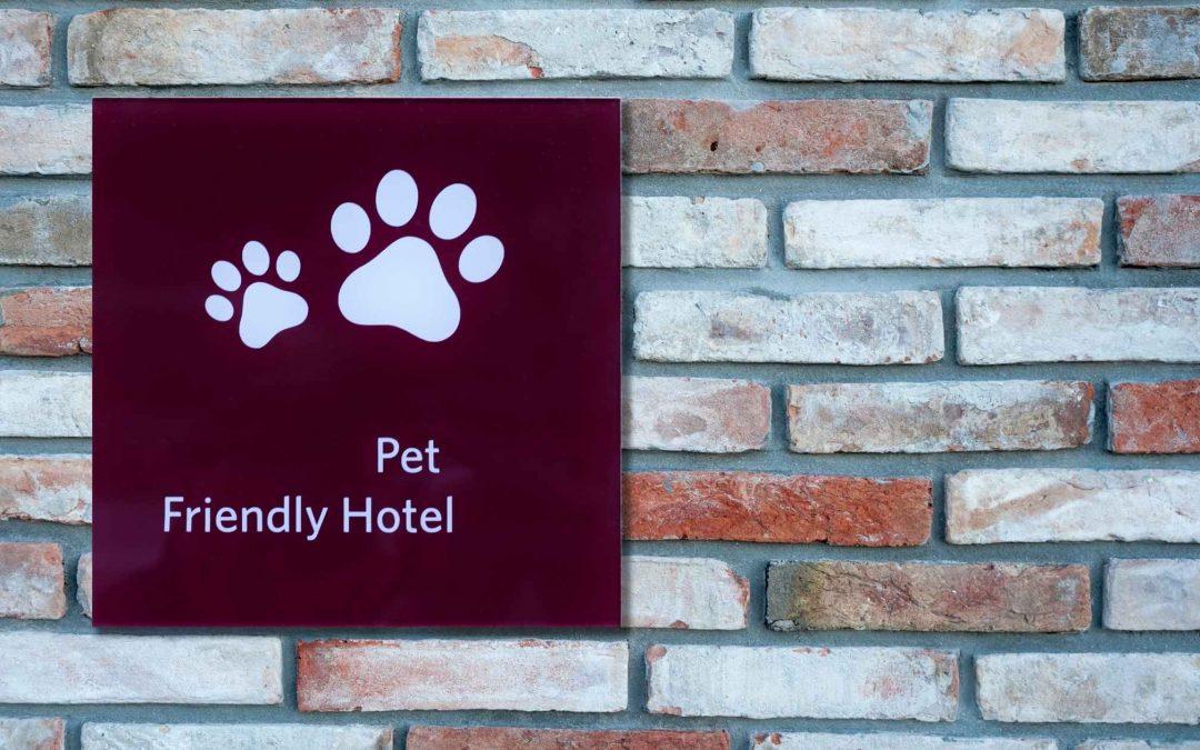 Hotel per cani: un comfort per i nostri amici a quattro zampe